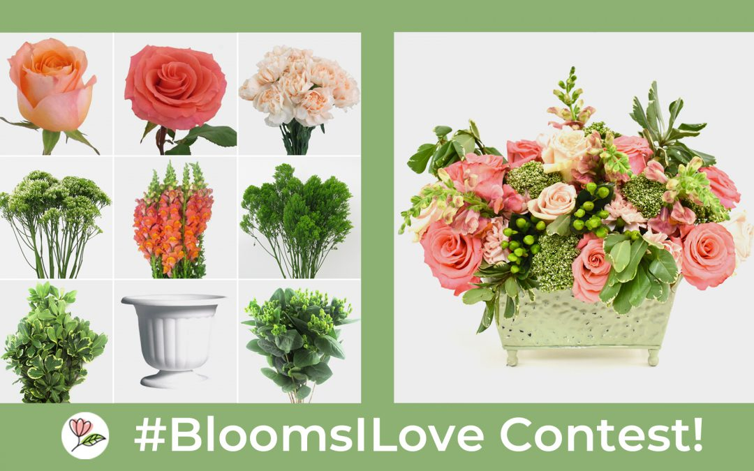 #BloomsILove Contest!