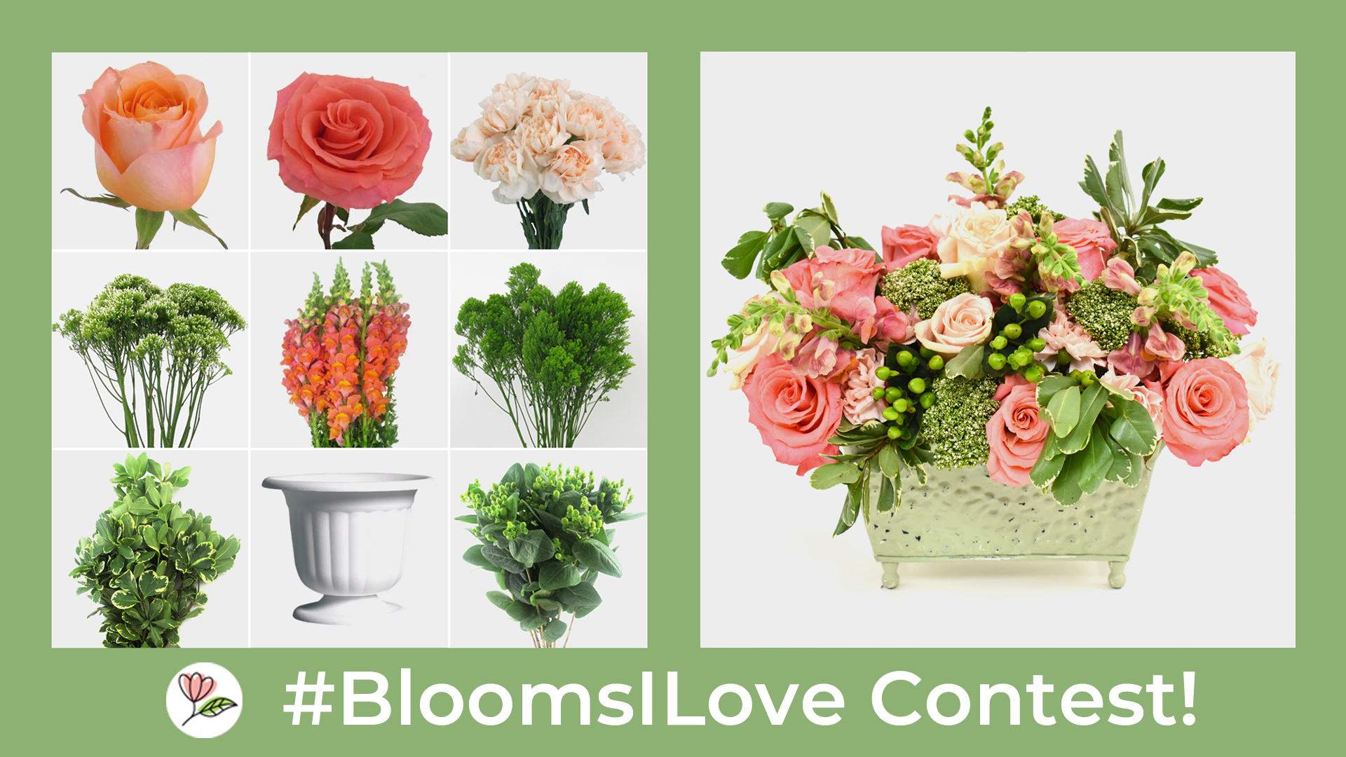 BloomsILove Contest! - Blooms By The Box