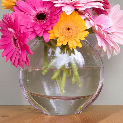 Specialty Glass Vases