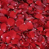 Valentine Red FD Rose Petals (30 Cups)