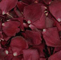 Crimson Red FD Rose Petals (30 Cups)