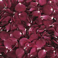 Merlot Red FD Rose Petals (30 Cups)