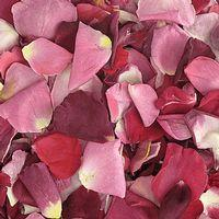 Very Berry Blend FD Rose Petals (30 Cups)