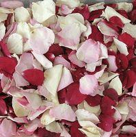 Bridal Bliss Blend FD Rose Petals (30 Cups)
