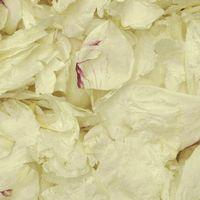 Off White FD Peony Petals (30 Cups)
