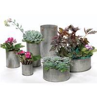 Wholesale Zinc Norah Vase 4.5\