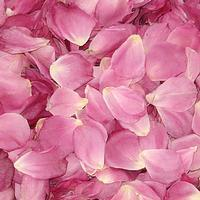Simplicity Pink Rose Petals - Freeze Dried (30 Cups)
