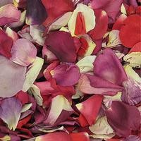 Lasting Love Fd Rose Petals (30 Cups)