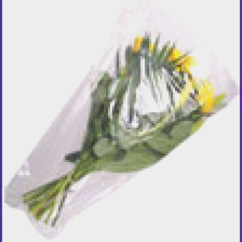 Cellophane Bouquet Sleeves (Clear) 5.5x20x20 (50 Pack)