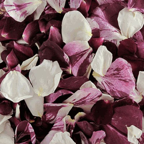 Seduction Blend FD Rose Petals (30 Cups)