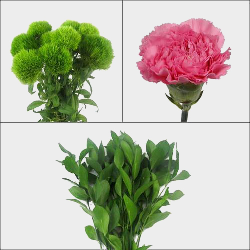 Carnation Wedding Pack