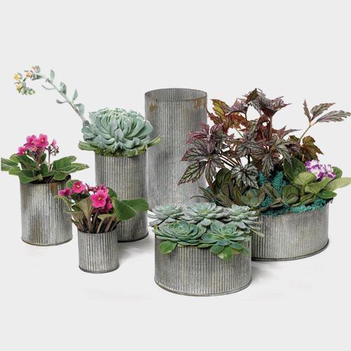 Wholesale Zinc Norah Vase 45 By 55 Blooms By The Box