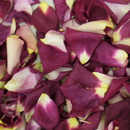 Love Purple Blend Rose Petals (30 Cups)