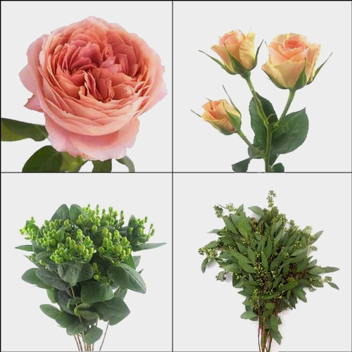 Garden Rose DIY Flower Pack