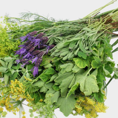 Assorted Herbs (6 Bunches)