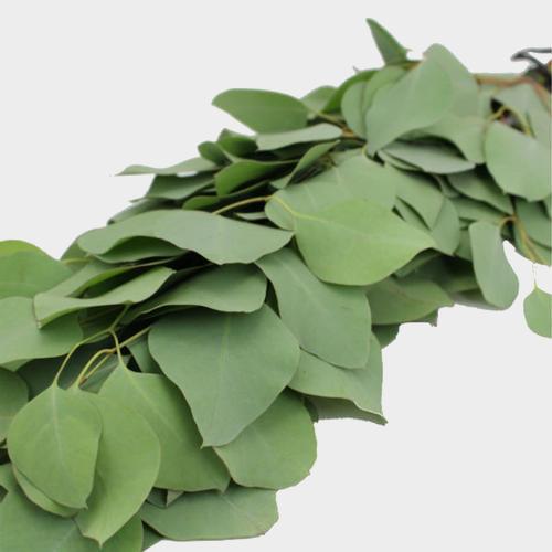 Garland Single Green