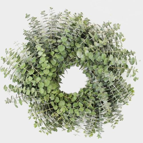 Specialty Greens Wreath 12 Inch